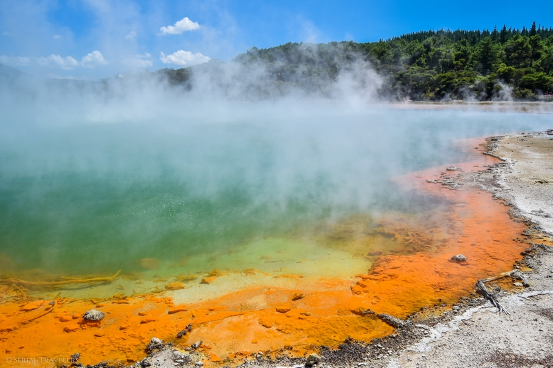 serial-travelers-nouvelle-zelande-wai-o-tapu-champagne-pool7