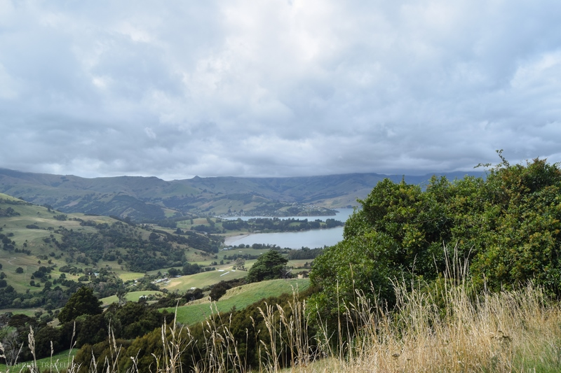 serial-travelers-nouvelle-zelande-akaroa-peninsule-robinsons-bay