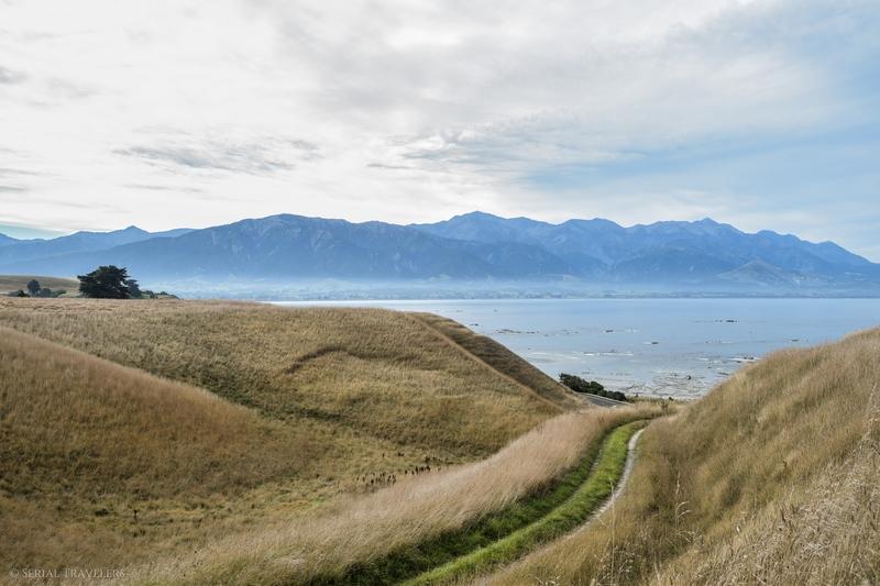 serial-travelers-nouvelle-zelande-kaikoura-mer-montagne-une-photo