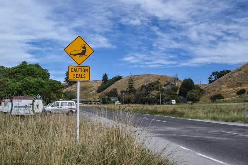 serial-travelers-nouvelle-zelande-kaikoura-route