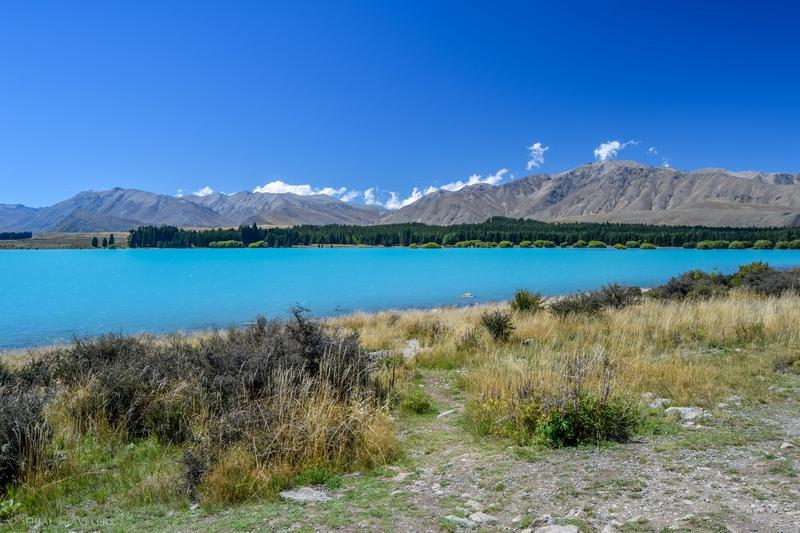 Découverte de Tekapo en 2 jours avec son lac bleu turquoise et ses belles nuits étoilées !