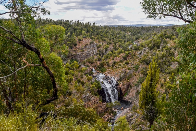 serial-travelers-australie-the-grampians-mckenzie-falls-lookout6