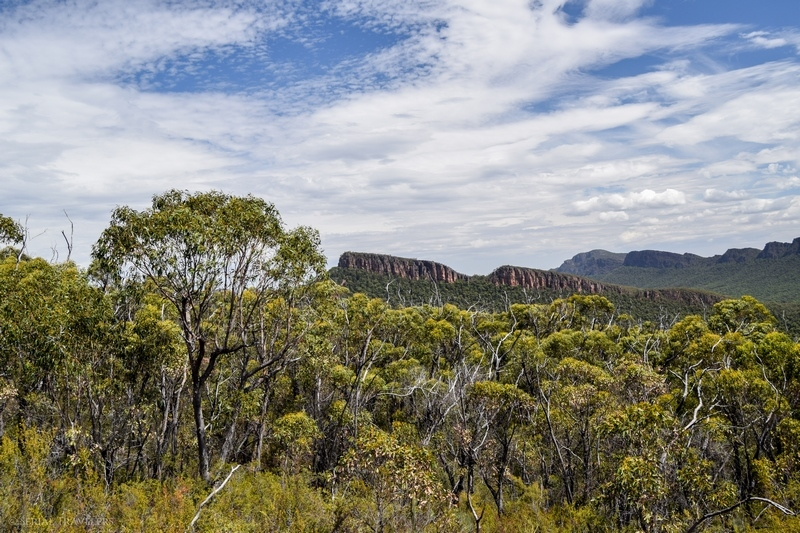 serial-travelers-australie-the-grampians-mount-william-road10