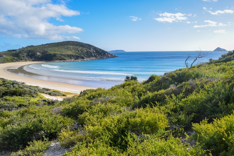 Wilson's Promontory, le parc incontournable de la côte Est australienne !