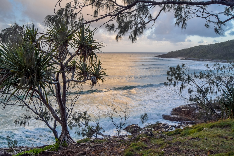 serial-travelers-australie-noosa-national-park27-dolphin-point-lookout