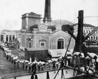 Carregamento de Café 1914