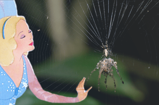 Don't even think about it, Blue Fairy. There are too many real spiders as it is.