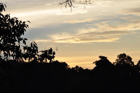 Merimbun Sunsets 081