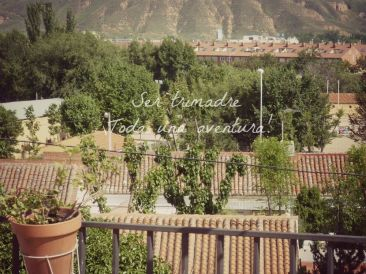Un jardín, una terraza o un balcón son perfectos para colgar el comedero para pájaros