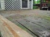deck board, 초록색의 이끼까지 덮어가는 표면과 거의 새것처럼 보이는 아랫 면