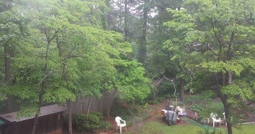 고요히, 잔잔히, 싸늘하게 내리는 5월 비..