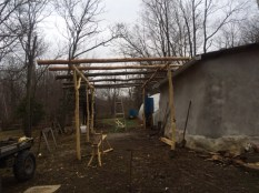 seedhouse shed frame