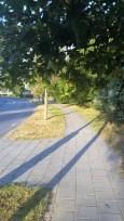 Boulevard Champs du Moulin, courbez vous!