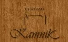 Chateau Kamnik