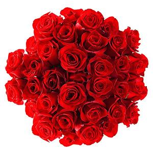 buchet-din-35-de-trandafiri-rosii-VjY8b