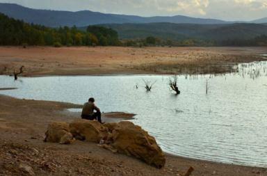 Nuri Bilge Ceylan'ın Yeni Filmi Ahlat Ağacı Vizyon Tarihi ve İlk Fragman