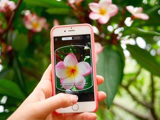[:tr]Bitkileri Fotoğraflarla Tanıyan PlantNet Mobil Uygulaması[:en]PlantNet For Plants Will Identify Plant From A Photos[:]