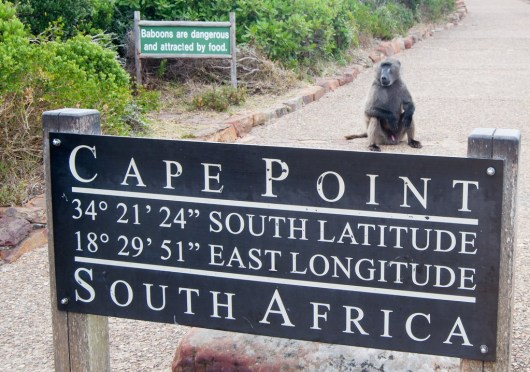Cape Point 4
