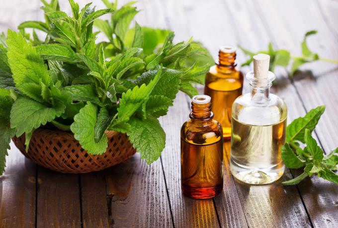 9 Jenis Obat Masuk Angin Tradisional dan Alami