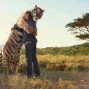 Hug my tiger