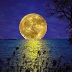 luna-amarilla-tocand-oel-mar