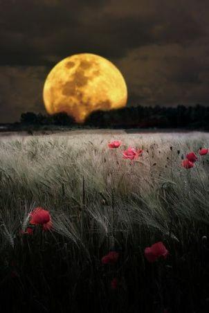 super-luna-llena-muy-cerca