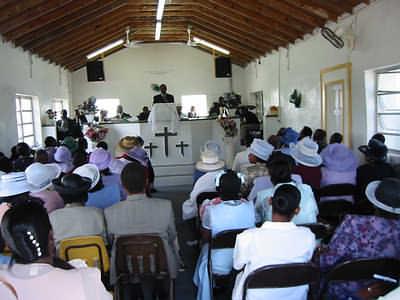 cat-island-church