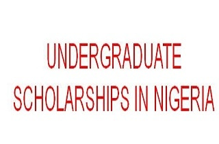 Photo of 16 Undergraduate Scholarships in Nigeria 2020/2021