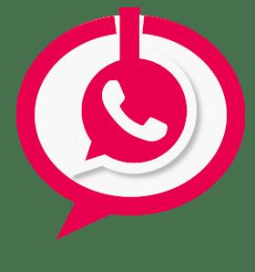 Contactar WhatsApp