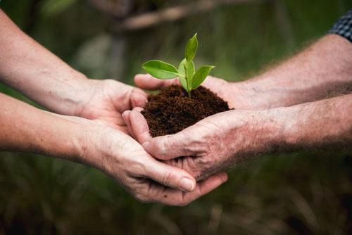 Quiero ser sostenible
