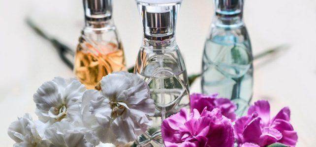 Depozit de parfum și produse cosmetice Anglia