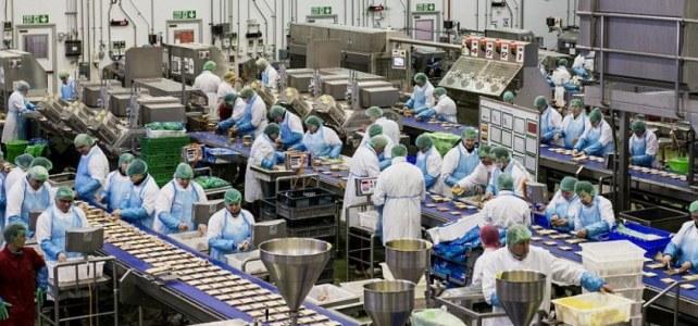 Personal fabrică de pateuri si conserve Anglia