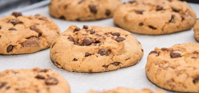 Fabrica de biscuiți BELGIA