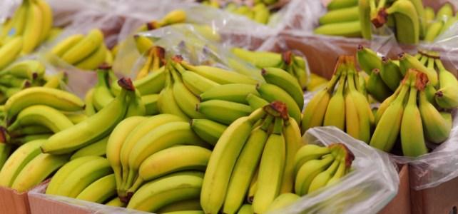Depozit de banane GERMANIA