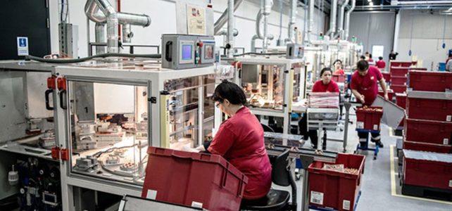 Fabrica de pateu Austria