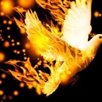 Domingo Pentecostes, Ano C