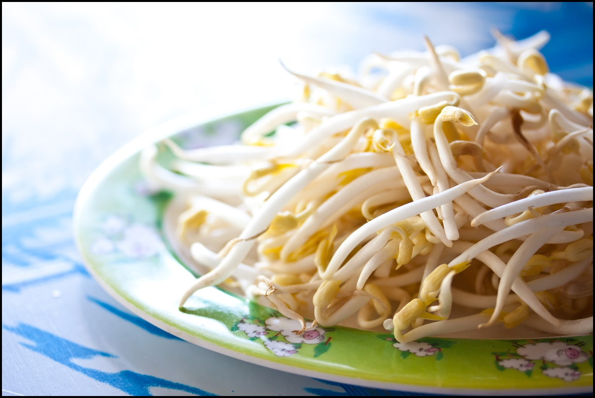 10 Reasons Why You Should Eat More Bean Sprouts What Are