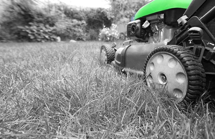 What equipment do you need for landscaping - SERV Plant Hire