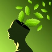 17635149-think-green-ecology-concept
