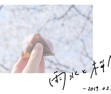 雨水と桜餅【和菓子と二十四節気】