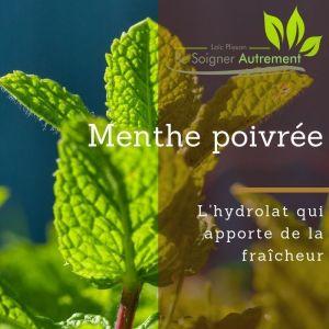 Fiche solution-phyto #6 – Hydrolat de Menthe Poivrée