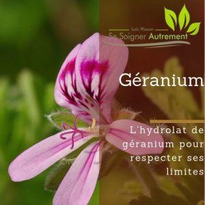 Fiche solution-phyto #24 – Hydrolat de Géranium
