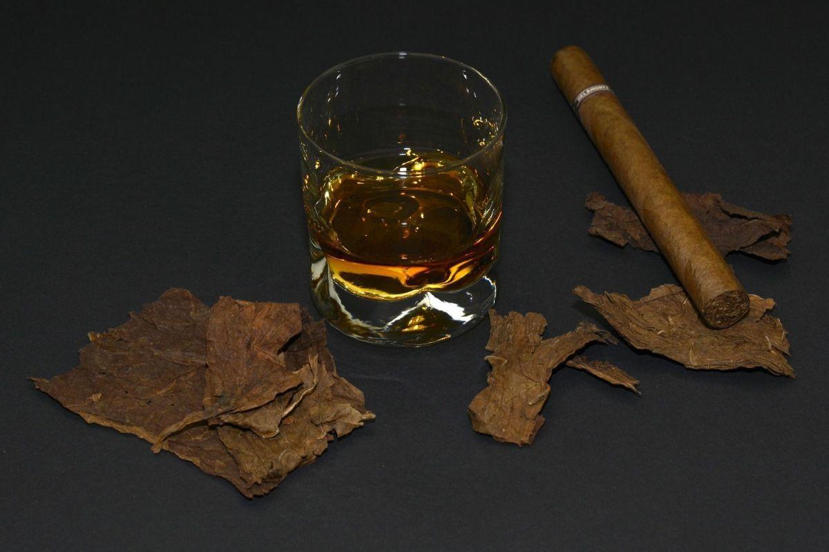 Même sans excès alcool et tabac, diminue le remodelage osseux