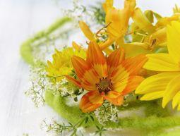 Les senteurs florales réveillent la délicatesse