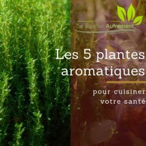 L'atelier en ligne : Les 5 plantes aromatiques pour cuisiner votre santé