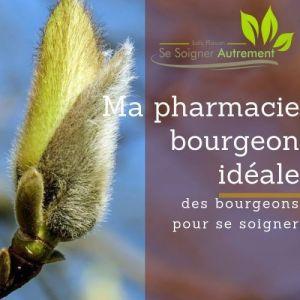 L'atelier en ligne : ma pharmacie bourgeon idéale