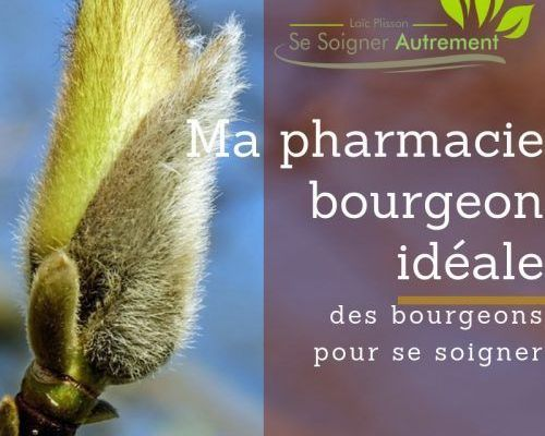 ma pharmacie bourgeon idéale
