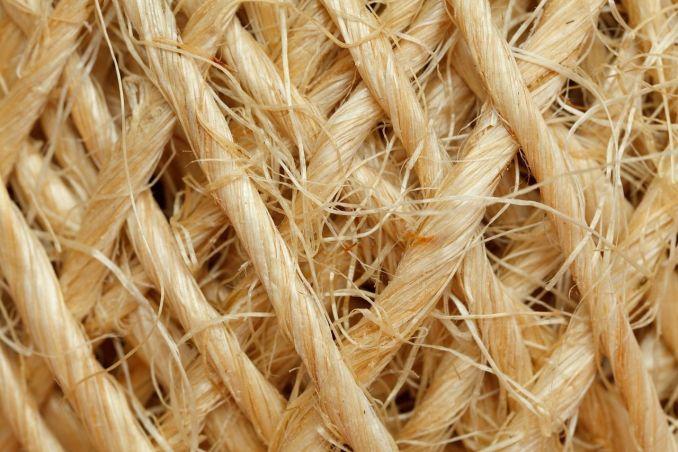 Plus les fibres seront anciennes plus il sera difficile de traiter cette forme de cellulite