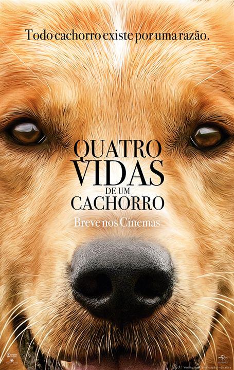 Quatro Vidas de Um Cachorro - Hoje na Sessão da Tarde