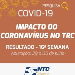 Pesquisa NTC